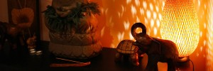What it is - Polynesian SPA Ritual for ONE? - Spa & Therapy Salon in Rufford Newark Nottinghamshire
